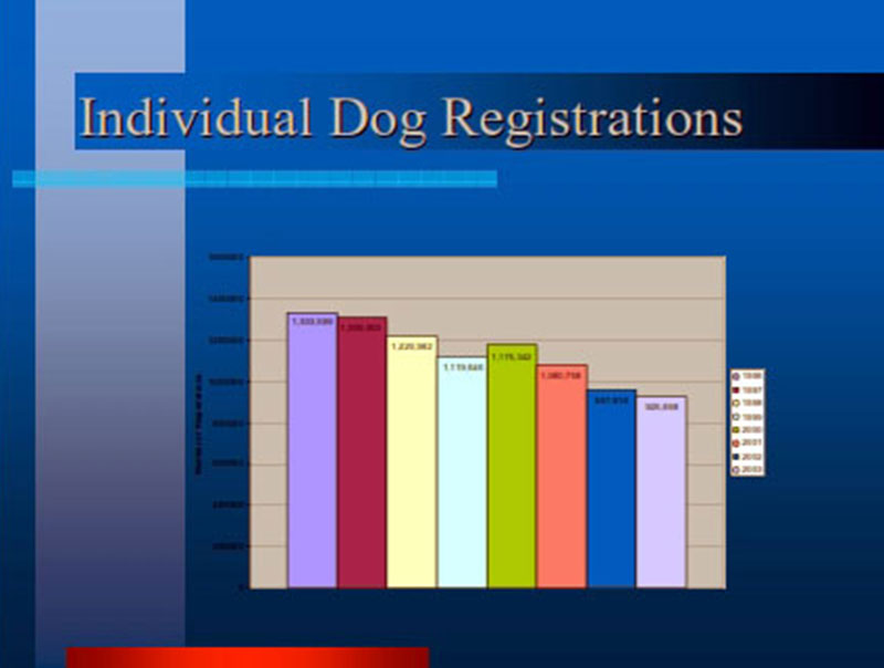 A Gathering Storm pt 2 Individual Dog Registrations