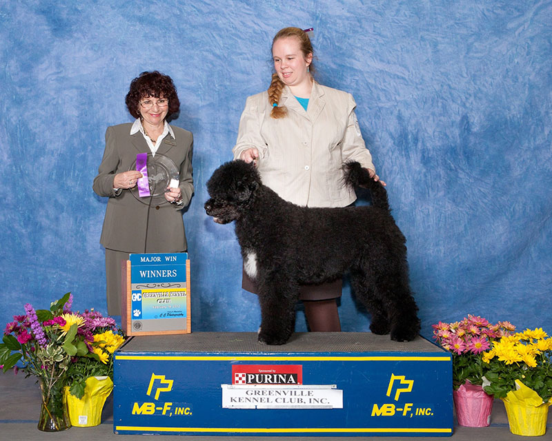 2012 Bri Tesarz, AKC Programs Manager, Event Operations