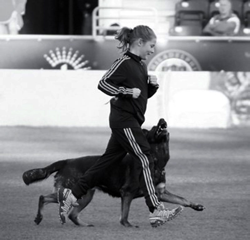 2013 – Junior with her working dog