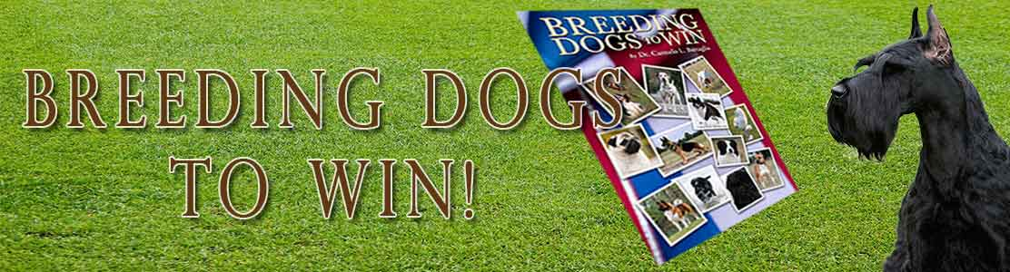 breeding dogs to win
