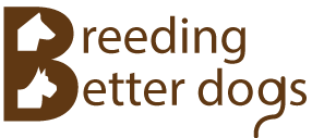 breeding better dogs logo